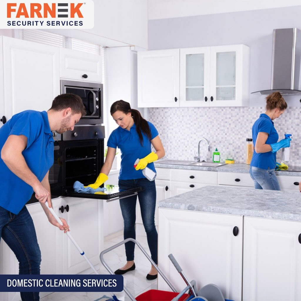 DOMESTIC CLEANING SERVICES (1)-min